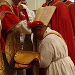 Ordinations 1.1