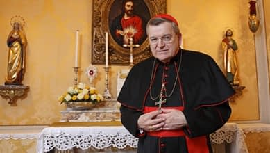 Cardinal Burke interviewed about the time before the Second Vatican Council, marriage and the Synod on the Family