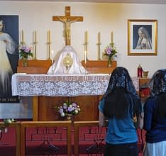 Traditional Latin Masses Celebrated in NZ under Summorum Pontificum