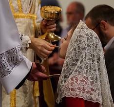 Latin Mass (Ecclesia Dei) Society of New Zealand – Newsletter, August 2020